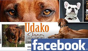 Facebook UDAKO Shop